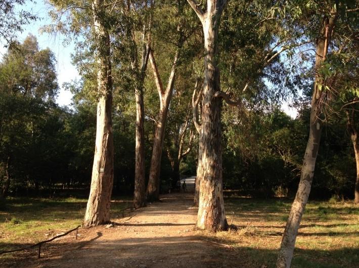 Saranda Butrint tour (6)