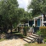 Drymades Inn